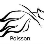 Poisson 1