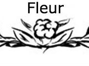 Zone gd Fleur 1