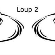Zone gd Loup 2